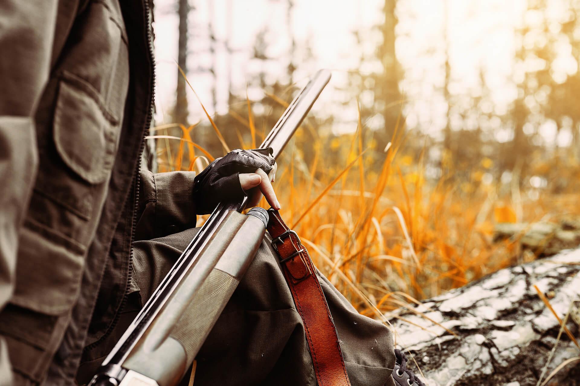 Caccia al cinghiale con fucile semiautomatico