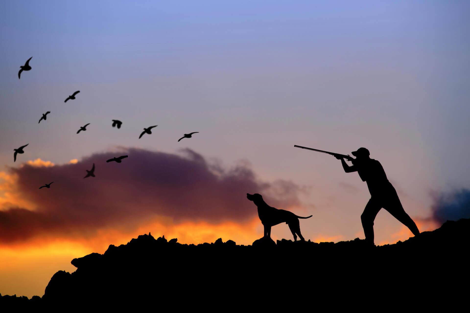 Caccia animali acquatici una caccia con passione