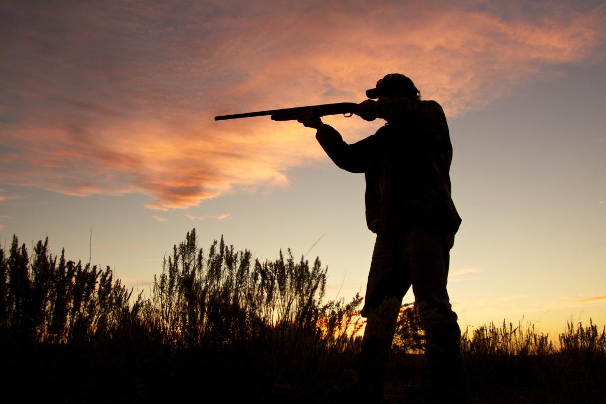 caccia Bergamo